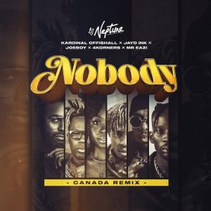DJ Neptune - Nobody (Canada Remix) Mp3 Download